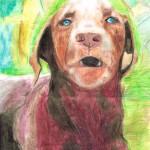 Верный-пес