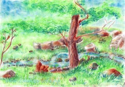 Katya-tree1