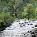 Реки Алтая