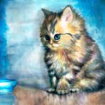 кот-МарииС
